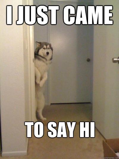 image via:http://www.quickmeme.com/meme/3rqo63